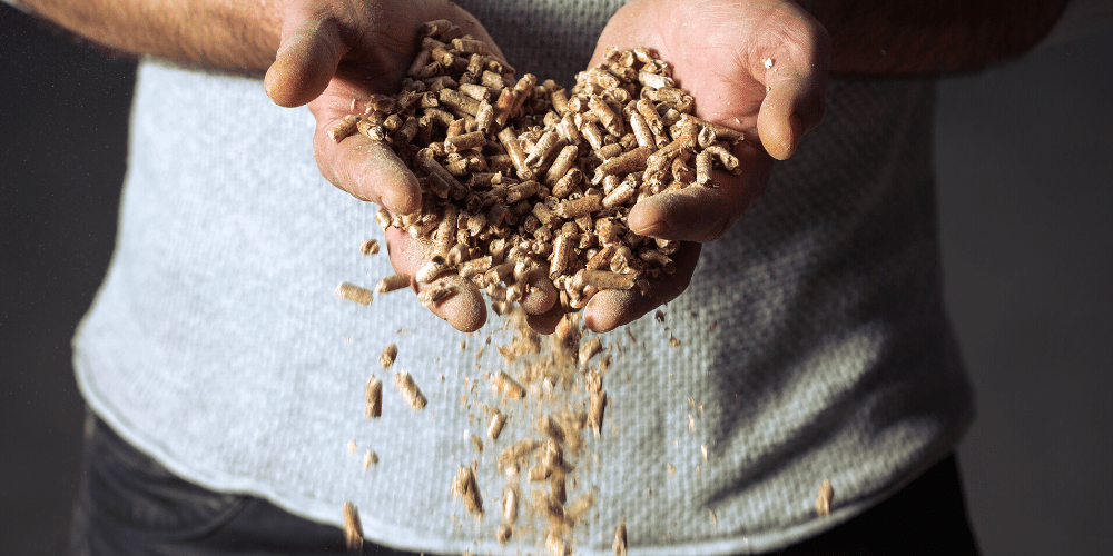 What are wood pellets?