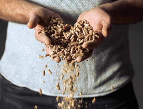 Wood Pellets and Wood Chip – what is Biomass Fuel?