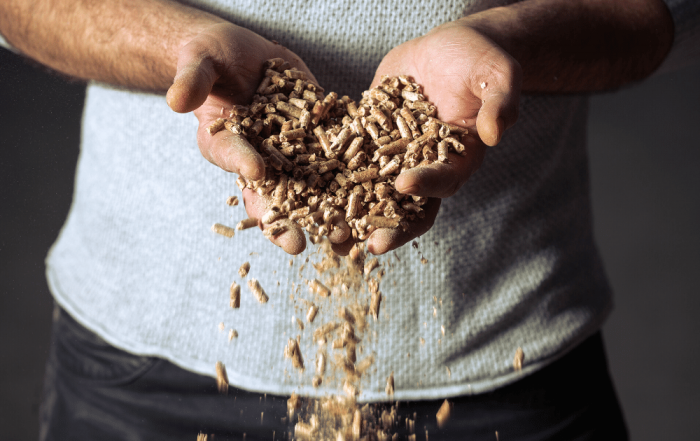 Wood pellets and wood chip - what is Biomass fuel?